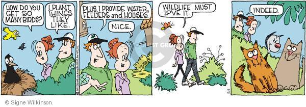 Comic Strip Signe Wilkinson  Family Tree 2011-05-04 cat