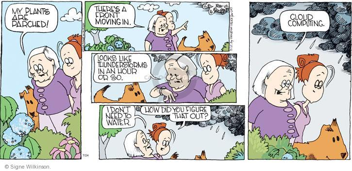 Comic Strip Signe Wilkinson  Family Tree 2011-07-24 watering plant