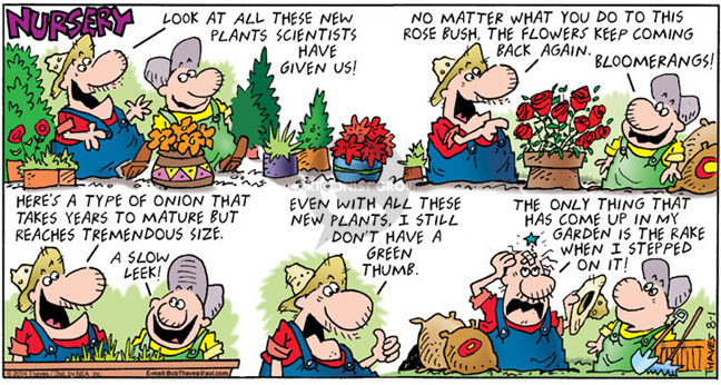 Comic Strip Bob Thaves Tom Thaves  Frank and Ernest 2004-08-01 vegetable