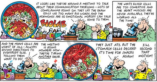 Comic Strip Bob Thaves Tom Thaves  Frank and Ernest 2005-01-16 cardiology