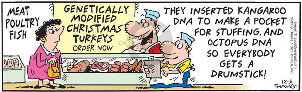 Comic Strip Bob Thaves Tom Thaves  Frank and Ernest 2009-12-05 meat
