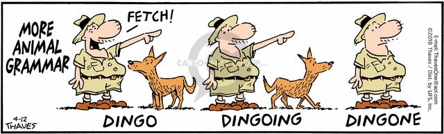 More animal grammar.  Fetch!  Dingo.  Dingoing.  Dingone.