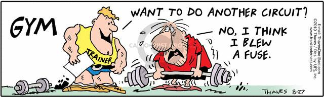 Comic Strip Bob Thaves Tom Thaves  Frank and Ernest 2010-08-27 electrical