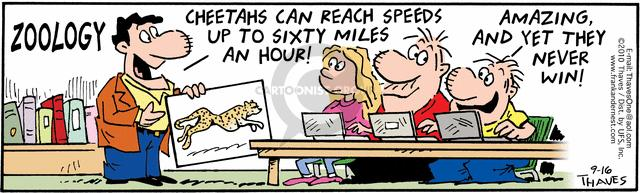 Zoology.  Cheetahs can reach speeds up to sixty miles an hour!  Amazing, and yet they never win!