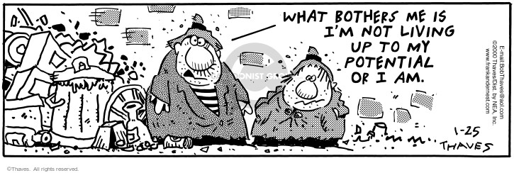 Comic Strip Bob Thaves Tom Thaves  Frank and Ernest 2000-01-25 aptitude
