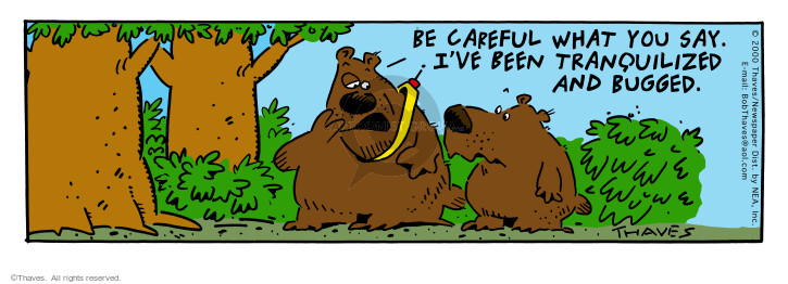 Comic Strip Bob Thaves Tom Thaves  Frank and Ernest 2000-06-03 hear