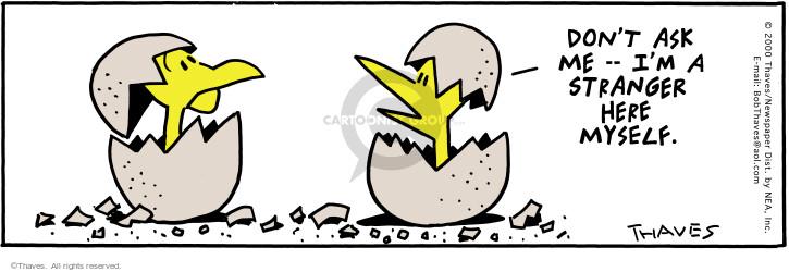Comic Strip Bob Thaves Tom Thaves  Frank and Ernest 2000-07-22 stranger