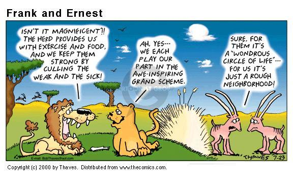 Comic Strip Bob Thaves Tom Thaves  Frank and Ernest 2000-07-23 lion