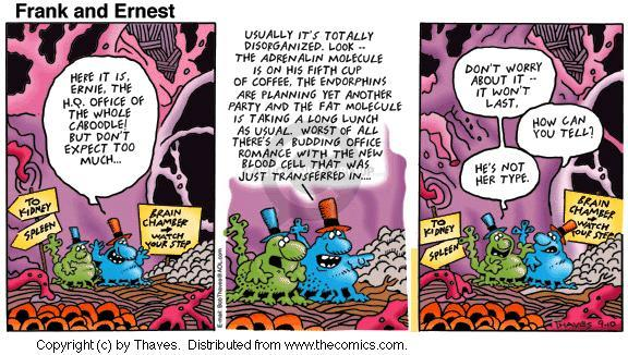 Comic Strip Bob Thaves Tom Thaves  Frank and Ernest 2000-09-10 anatomy
