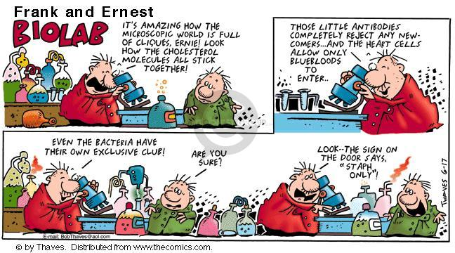 Comic Strip Bob Thaves Tom Thaves  Frank and Ernest 2001-06-17 cardiology