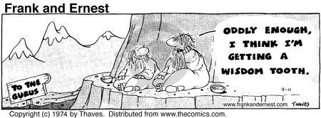 Comic Strip Bob Thaves Tom Thaves  Frank and Ernest 1974-09-11 Capitol Hill