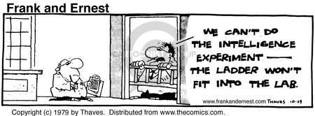 Comic Strip Bob Thaves Tom Thaves  Frank and Ernest 1979-10-29 assess