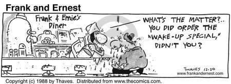 Comic Strip Bob Thaves Tom Thaves  Frank and Ernest 1988-12-20 pail
