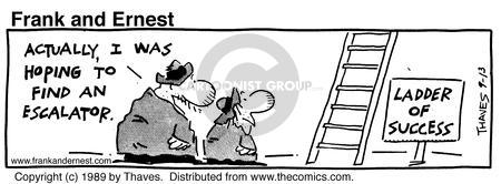Comic Strip Bob Thaves Tom Thaves  Frank and Ernest 1989-09-13 ladder of success