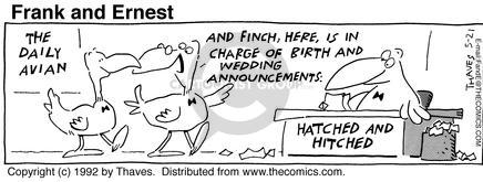 The Daily Avian. And Finch here, is in charge of birth and wedding announcements. Hatched and hitched.