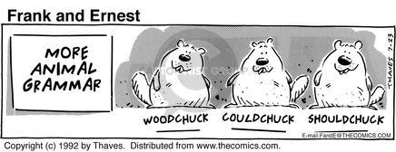Comic Strip Bob Thaves Tom Thaves  Frank and Ernest 1992-07-23 grammar