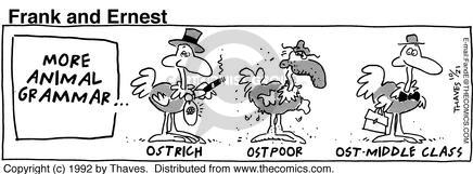 More animal Grammar. Ostrich.  Ostrpoor. Ost-middle class