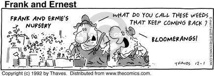 Comic Strip Bob Thaves Tom Thaves  Frank and Ernest 1992-12-01 florist