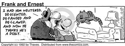 Comic Strip Bob Thaves Tom Thaves  Frank and Ernest 1992-12-29 doily