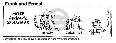 Comic Strip Bob Thaves Tom Thaves  Frank and Ernest 1993-05-26 grammar