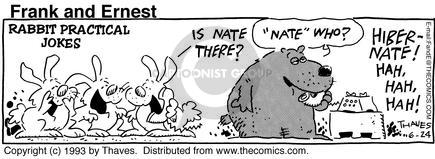 Comic Strip Bob Thaves Tom Thaves  Frank and Ernest 1993-06-24 wildlife