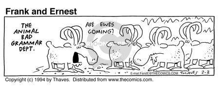 Comic Strip Bob Thaves Tom Thaves  Frank and Ernest 1994-02-03 sheep