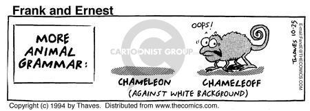 More Animal Grammar: Chameleon (against white background) Chameleoff - oops!