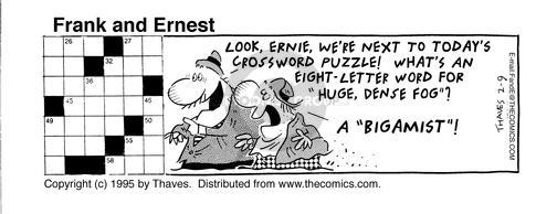 Comic Strip Bob Thaves Tom Thaves  Frank and Ernest 1995-02-09 letter