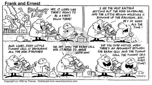 Comic Strip Bob Thaves Tom Thaves  Frank and Ernest 1995-04-30 brain cell