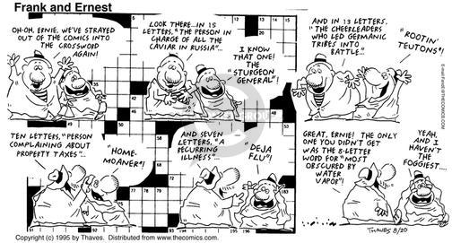 Comic Strip Bob Thaves Tom Thaves  Frank and Ernest 1995-08-20 letter
