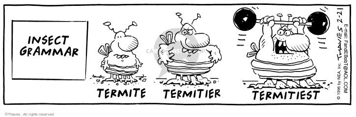 Insect grammar. Termite. Termitier. Termitiest.