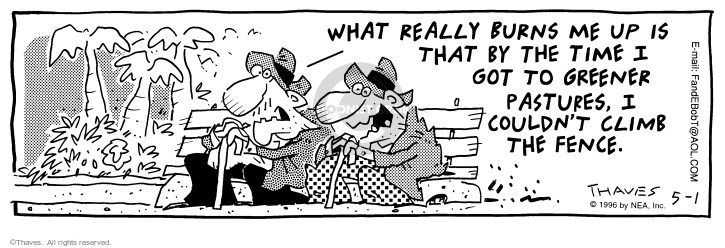 Comic Strip Bob Thaves Tom Thaves  Frank and Ernest 1996-05-01 retirement