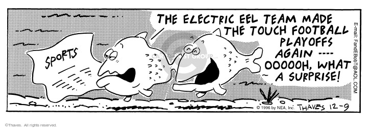 Comic Strip Bob Thaves Tom Thaves  Frank and Ernest 1996-12-09 playoff