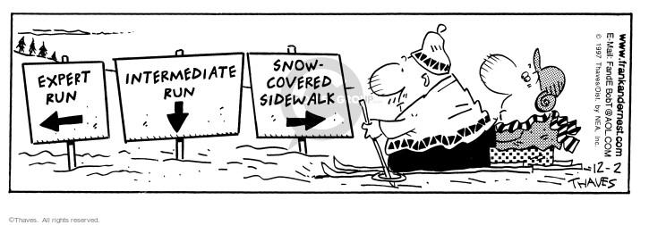 Comic Strip Bob Thaves Tom Thaves  Frank and Ernest 1997-12-02 skier