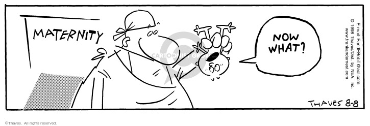 Comic Strip Bob Thaves Tom Thaves  Frank and Ernest 1998-08-08 process