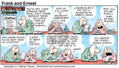Comic Strip Bob Thaves Tom Thaves  Frank and Ernest 1999-02-14 sheep