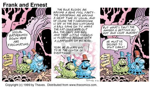 Comic Strip Bob Thaves Tom Thaves  Frank and Ernest 1999-02-21 physiology