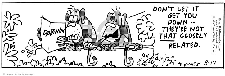 Comic Strip Bob Thaves Tom Thaves  Frank and Ernest 1999-08-17 jungle