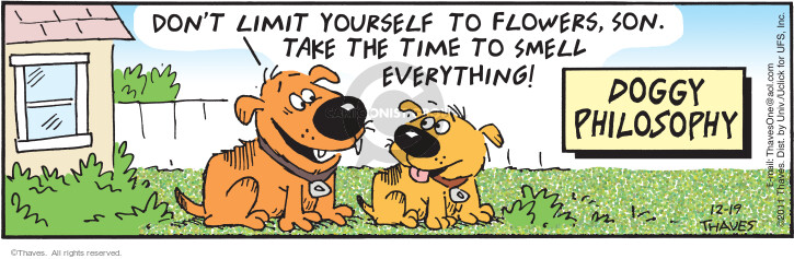 Comic Strip Bob Thaves Tom Thaves  Frank and Ernest 2011-12-19 lifestyle