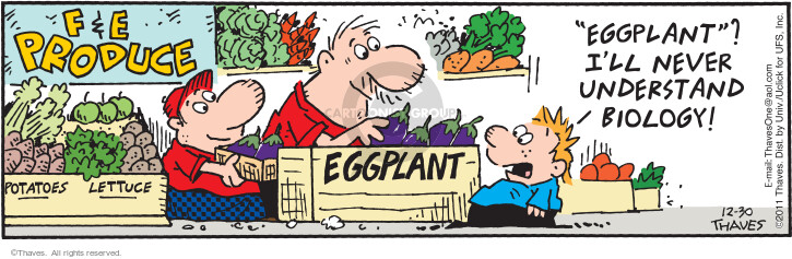 Comic Strip Bob Thaves Tom Thaves  Frank and Ernest 2011-12-30 vegetable
