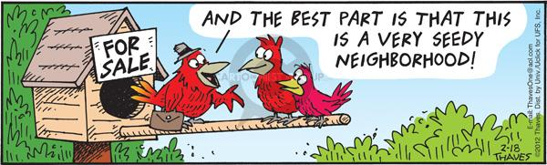 Comic Strip Bob Thaves Tom Thaves  Frank and Ernest 2012-01-18 bird house