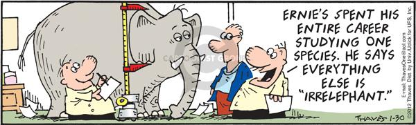 "Ernies spent his entire career studying one species.  He says everything else is ""irrelephant."""