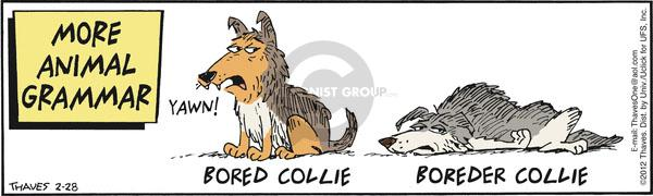 More Animal Grammar.  Yawn.  Bored collie.  Boreder collie.