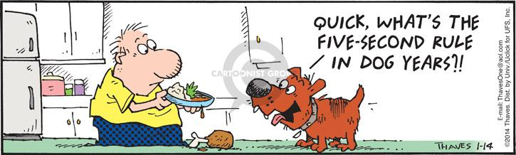 Quick, whats the five-second rule in dog years?