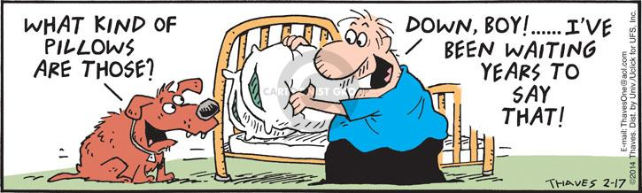 Comic Strip Bob Thaves Tom Thaves  Frank and Ernest 2014-02-17 pillow