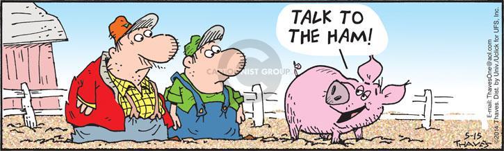 Comic Strip Bob Thaves Tom Thaves  Frank and Ernest 2014-05-15 livestock