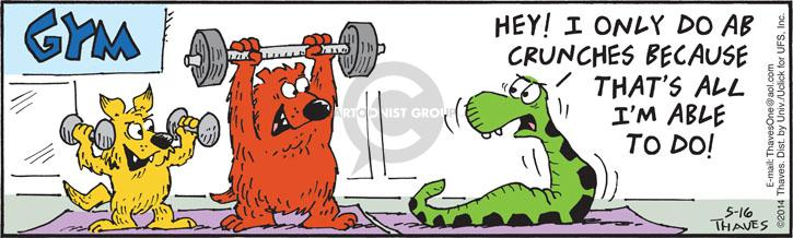Comic Strip Bob Thaves Tom Thaves  Frank and Ernest 2014-05-16 gym