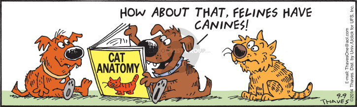 Cartoonist Bob Thaves Tom Thaves  Frank and Ernest 2014-09-09 dog and cat