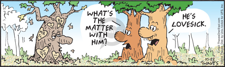 Cartoonist Bob Thaves Tom Thaves  Frank and Ernest 2014-10-22 damage