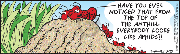 Comic Strip Bob Thaves Tom Thaves  Frank and Ernest 2015-05-27 aphid